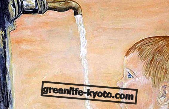 Referéndum público de agua: 12-13 de junio.