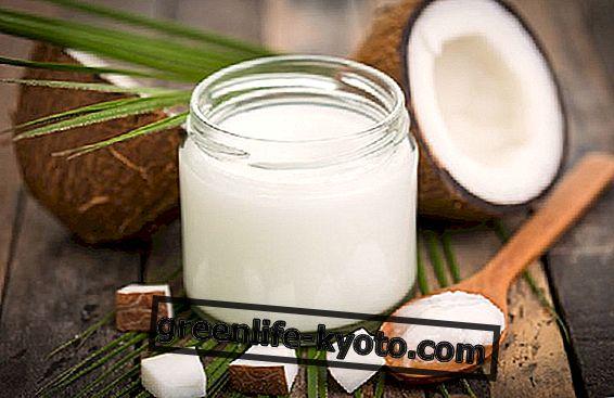 Kokosolie: een hulpmiddel om gewicht te verliezen?