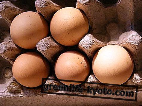 Naturliga vitamin B12-tillskott, vad de är och när de ska ta dem