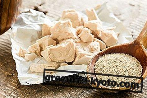 Naturliga B6-vitaminer, vad de är och när de ska ta dem