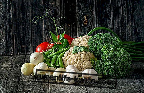 Τράπεζα τροφίμων στην ογκολογία: η σχέση μεταξύ της ογκολογίας και της τροφής