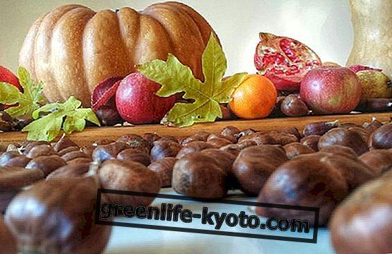 November puu-ja köögiviljad
