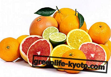 Makanan yang kaya dengan vitamin C, apa yang mereka ada