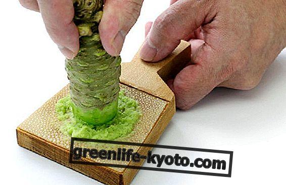Mierikswortel en wasabi