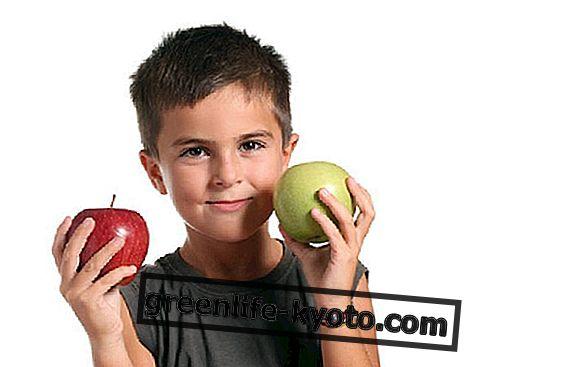 Alimentación de los niños, las recetas de marzo.