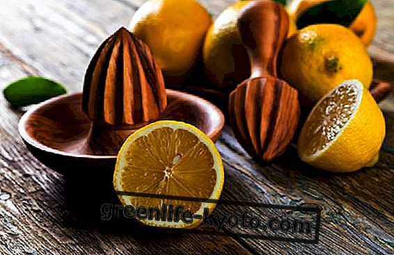Voordelen van citroen: sap en schil