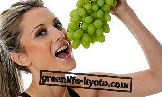 Експертите от Cantine Brusa разкриват истината за гроздето
