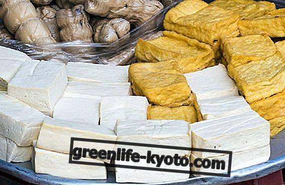Tofu tipai