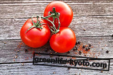 Ντομάτες: ιδιότητες, θρεπτικές τιμές, θερμίδες