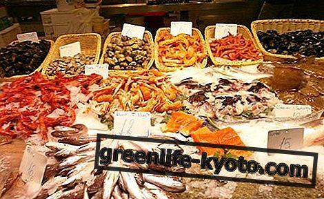 Ψάρια: χαρακτηριστικά, διατροφική αξία, φρεσκάδα