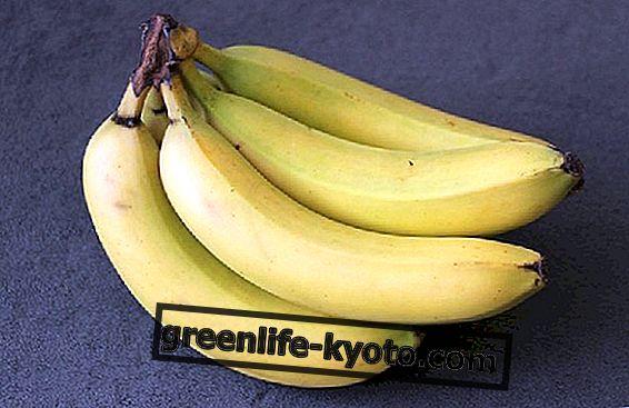 バナナ、四季折々の果実