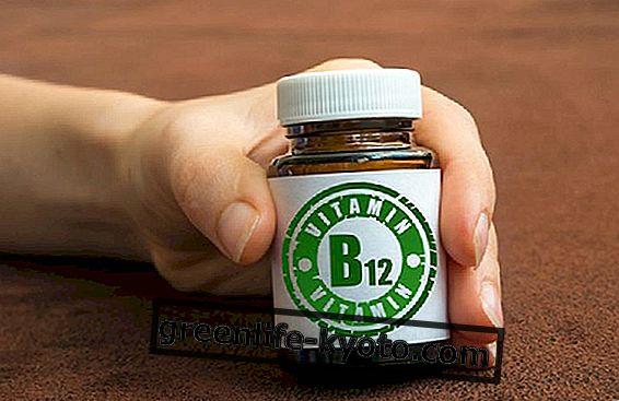 Vitamina B12: cuándo tomarla y dosis.