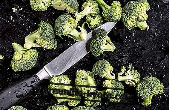 Pirmā kursa receptes ar brokoļiem