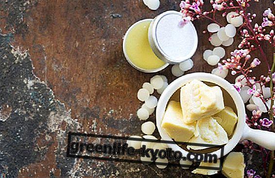 Manteiga de cacau na cozinha
