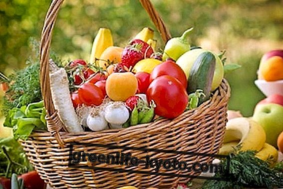 June fruits and vegetables