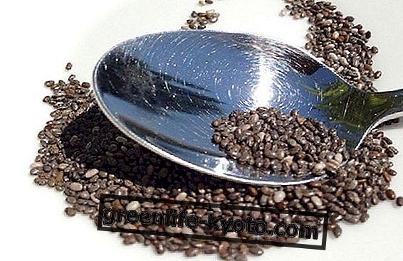 Chia seemned: kuidas neid süüa