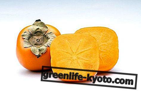 Persimmon: propriétés, valeurs nutritionnelles, calories