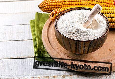 Kukurūzas milti, īpašības un izmantošana