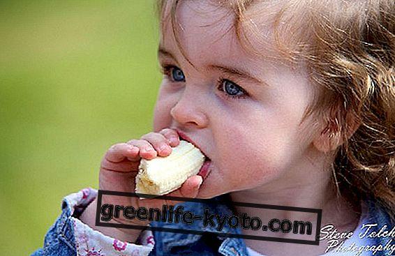Kuidas harida lapsi hästi süüa