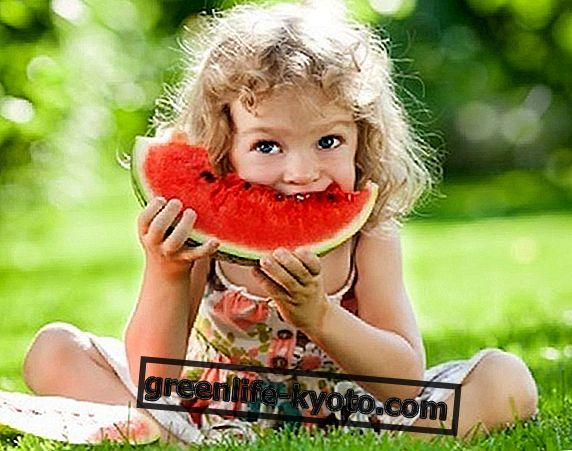 ग्रीष्म ऋतु का फल