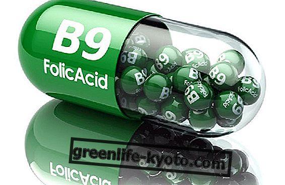Los 5 beneficios del ácido fólico.