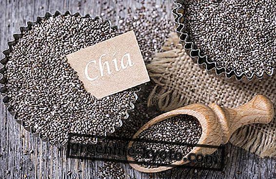 Chia σπόροι, ένα πολύ αρχαίο ευεργετικό και θρεπτικό φαγητό
