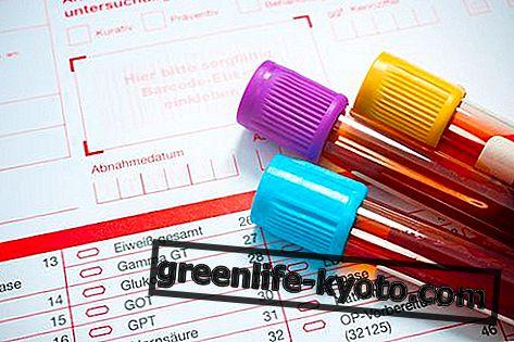 Dieta del grupo sanguíneo: cómo funciona, beneficios, contraindicaciones.