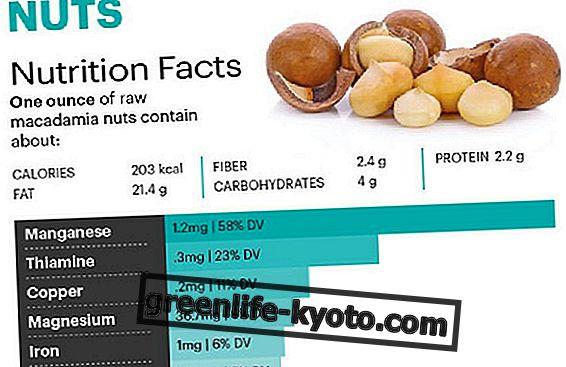 Macadamia Nuts: Πλούσιο σε μαγγάνιο τρόφιμο που υποστηρίζει την υγεία των οστών