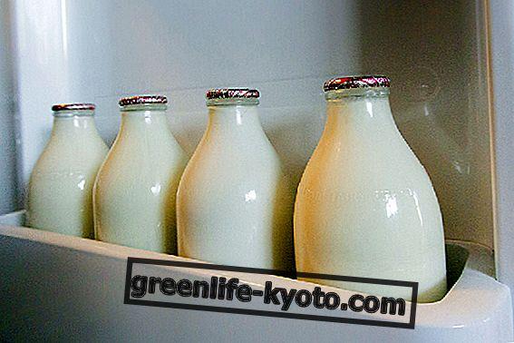 Piim makrobiotilises dieedis