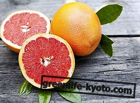 Grapefruit zaden, eigenschappen en hoe ze te gebruiken