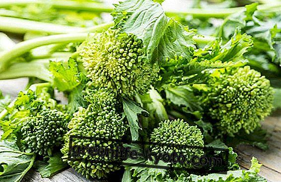 Zeleni repa: kako jih kuhati z nekaterimi recepti