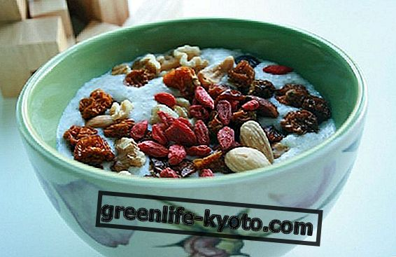 Goji berries: daily dose and contraindications