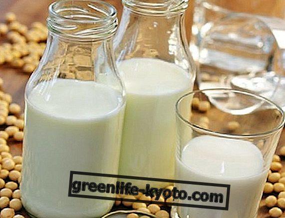 Mājas sojas piens