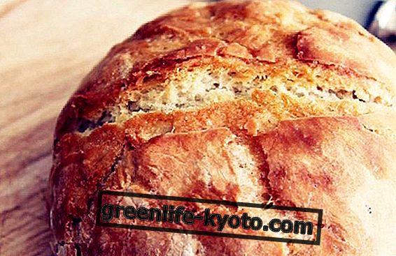 Quinoa bröd: receptet