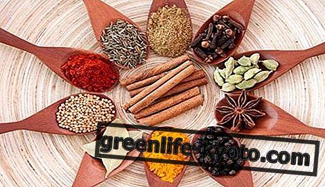 Rempah-rempah: senarai, sifat, nilai pemakanan