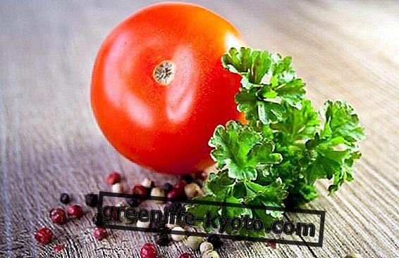 सितंबर की शीर्ष सब्जी: टमाटर