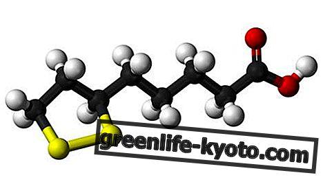 Липоева киселина: ползи, противопоказания, където се открива