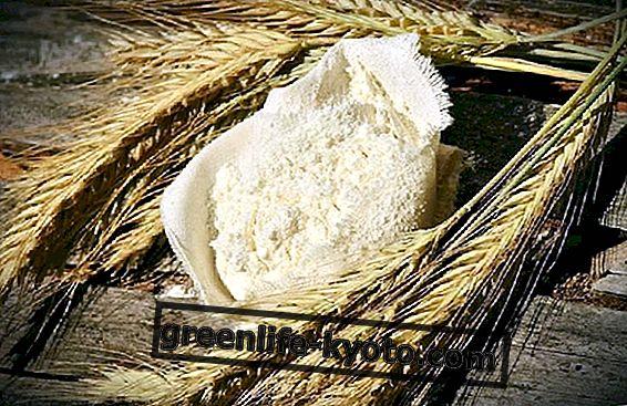 3 zoete recepten met manitoba-meel