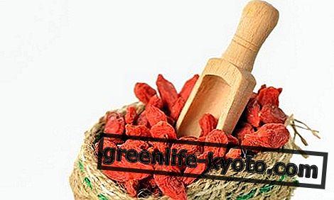 Goji μούρα: ιδιότητες, τα οφέλη, πώς να τα φάνε