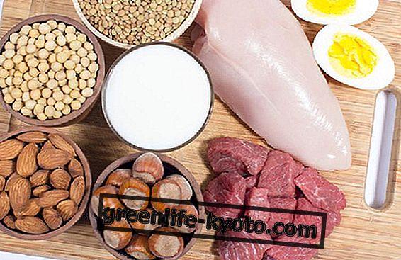 Високо протеинова диета: пример и 2 рецепти