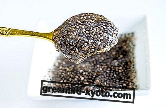Para regular el intestino, pruebe las semillas de chía.