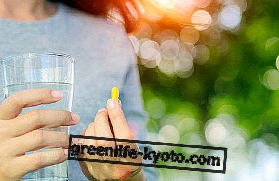 마그네슘 및 생체 이용률