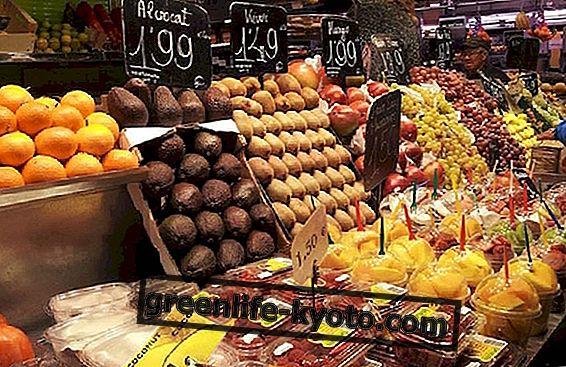 Барселона: град на веганската и вегетарианска култура