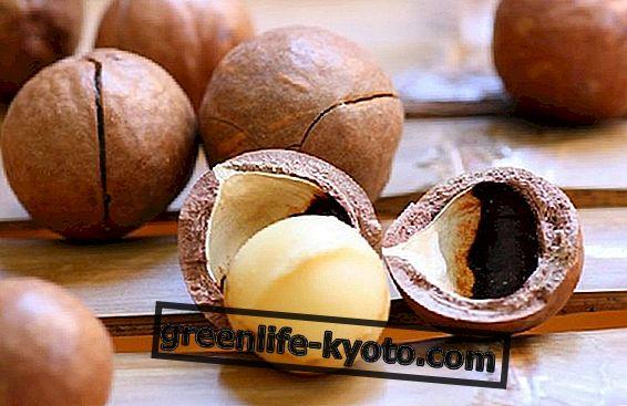 Macadamia nuci împotriva inflamației