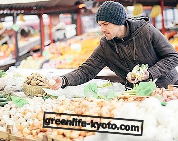 El mercado orgánico y la opción vegetariana-vegana: un presupuesto sectorial