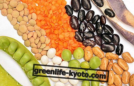 Vitamin E a zinek: na co jsou