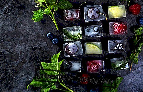 Jég, virágok, gyümölcsök és gyógynövények