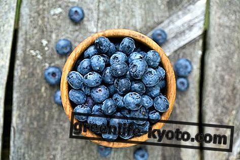 Mėlynės: savybės, maistinės vertės, kalorijos