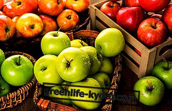 Számos alma és tulajdonság
