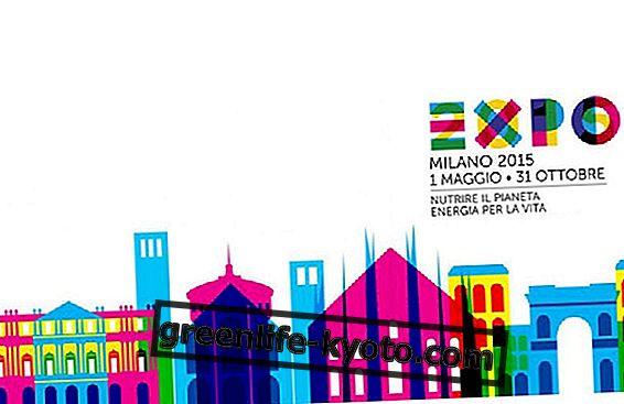 Razmišljanje o Expo